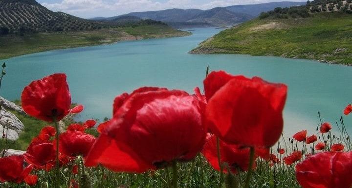 Lake Iznajar 4